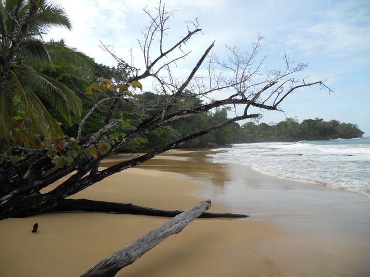 Beach in Panama
